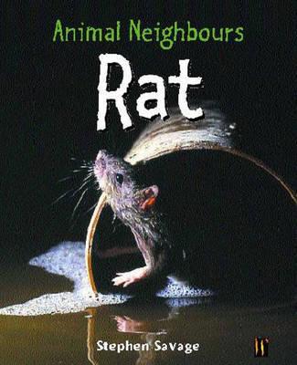 Rat by Stephen Savage image