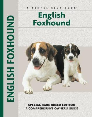 English Foxhound by Chelsea Devon