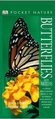 Butterflies and Moths by Paul Sterry