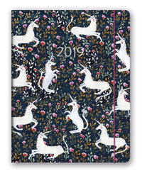 Just Right: Magical 17 Month 2019 Compact Diary