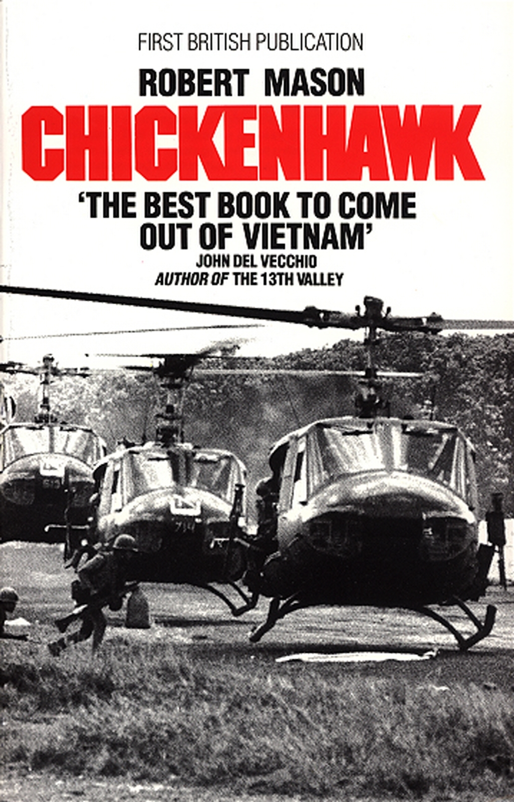 Chickenhawk by Robert Mason image