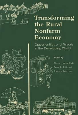 Transforming the Rural Nonfarm Economy image