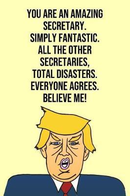 You Are An Amazing Secretary Simply Fantastic All the Other Secretaries Total Disasters Everyone Agree Believe Me by Laugh House Press