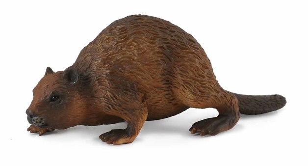 CollectA - Beaver (M)