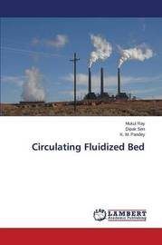 Circulating Fluidized Bed by Ray Mukul