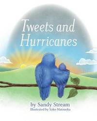 Tweets and Hurricanes by Sandy Stream