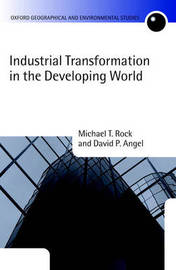 Industrial Transformation in the Developing World by Michael T Rock