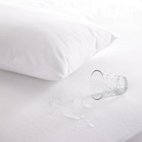 Brolly Sheets: Quilted Waterproof Pillow Protector image
