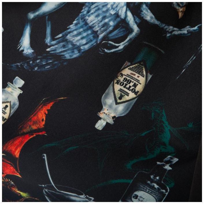 Harry Potter Magical Creatures Black Cape: M image