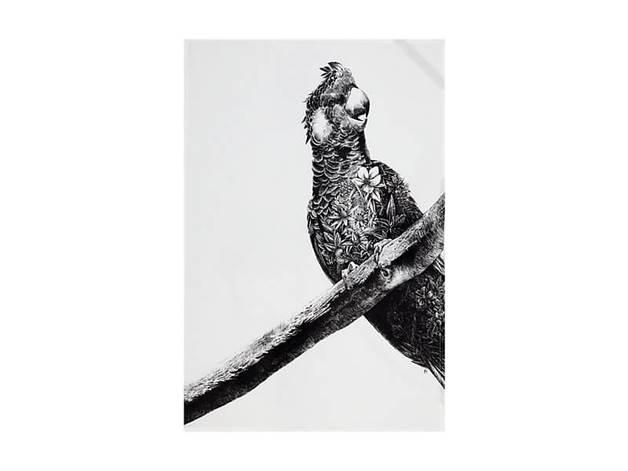 Maxwell & Williams Marini Ferlazzo Tea Towel - Carnaby's Cockatoo