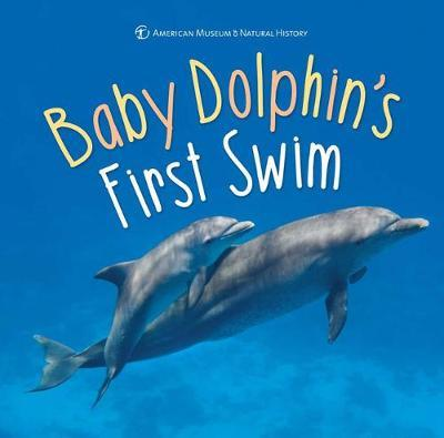 Baby Dolphin's First Swim by American Museum of Natural History