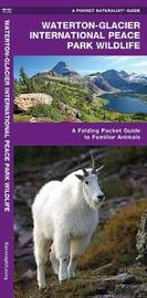Glacier National Park Wildlife: An Introduction to Familiar Species by Senior Consultant James Kavanagh (Senior Consultant, Oxera Oxera Oxera)